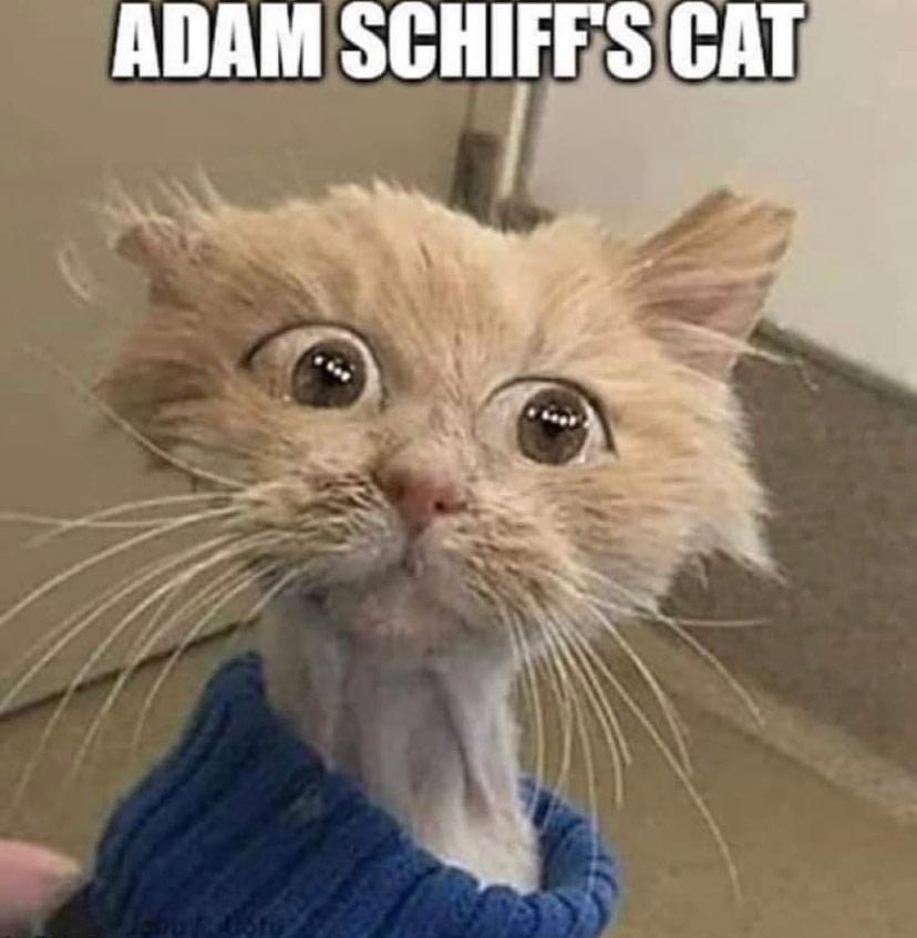 Adam Schiff Eye Condition